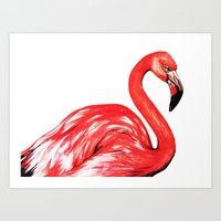 Delta The Flamingo Art Print