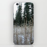 Falltime In Watervalley iPhone & iPod Skin
