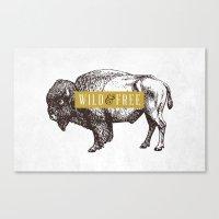 Wild & Free (Bison) Canvas Print