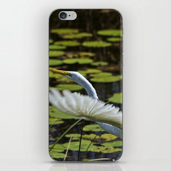 Egret Take Off iPhone & iPod Skin