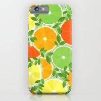 A Slice of Citrus iPhone 6 Slim Case