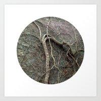 Planetary Bodies - Vines Art Print
