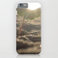 Myrtle Beach iPhone 6 Slim Case