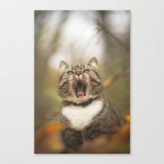 Cat roar  Canvas Print