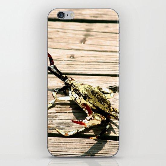 CrabWalk iPhone & iPod Skin