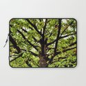 Leaves and Branches Laptop Sleeve