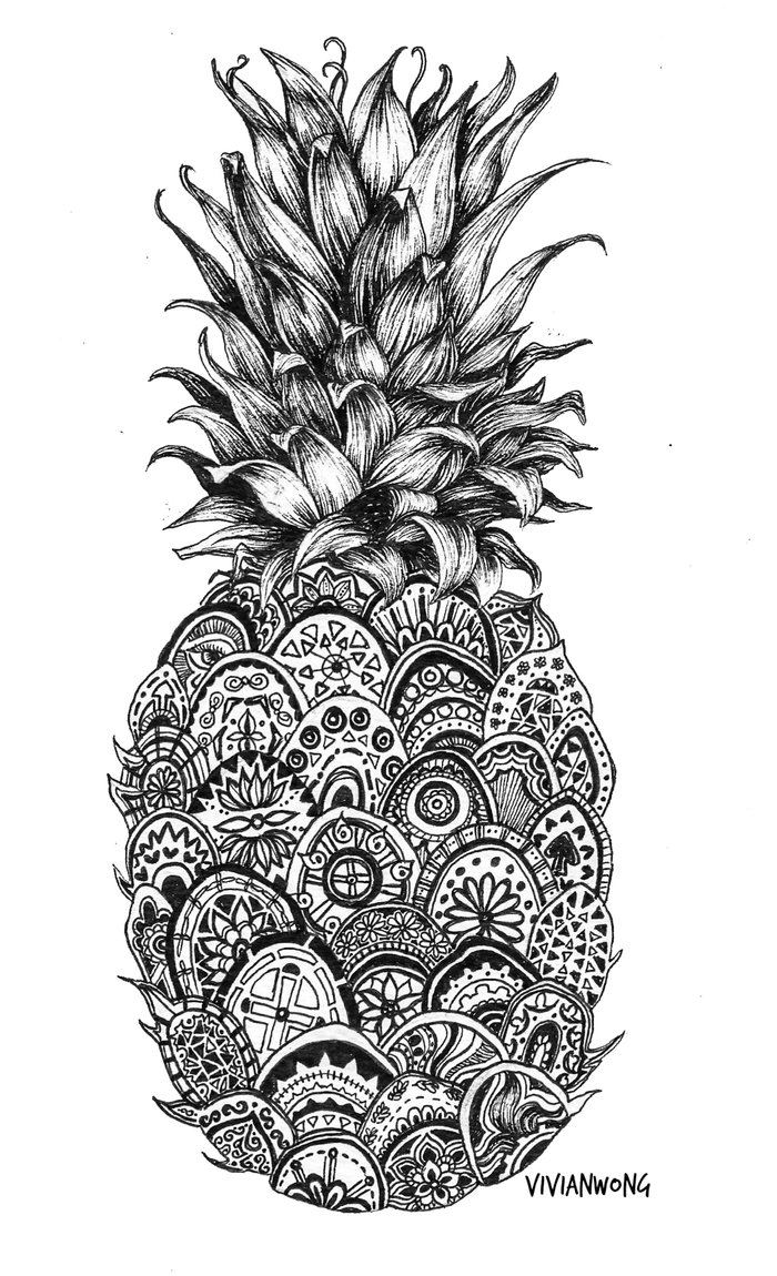 Pineapple Drawings Related Keywords amp Suggestions