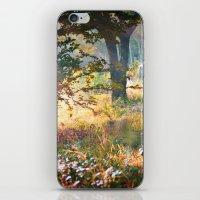 Autumn Mood iPhone & iPod Skin