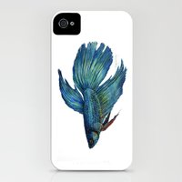 iPhone Cases featuring Mortimer the Betta Fish   by Cindy Lou Bailey
