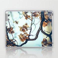 Autumn Branches Laptop & iPad Skin