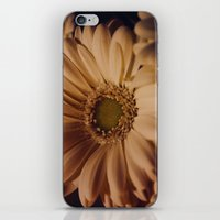 Antique Daisy iPhone & iPod Skin