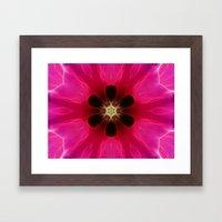 Pink Flower Abstract Framed Art Print