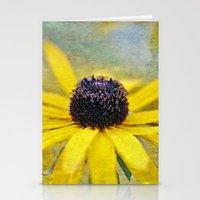 Summer Joy Stationery Cards