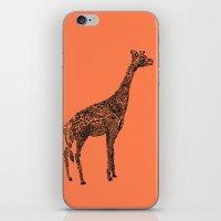 Designer Giraffe Coral iPhone & iPod Skin