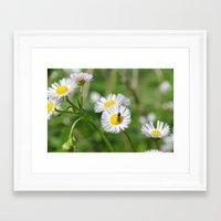 Bug on flowers Framed Art Print