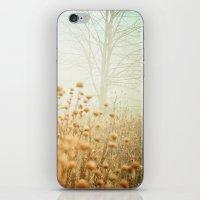 The Magic Of Fog iPhone & iPod Skin