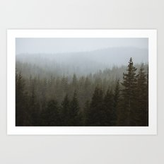 Snowy Forks Forest Art Print