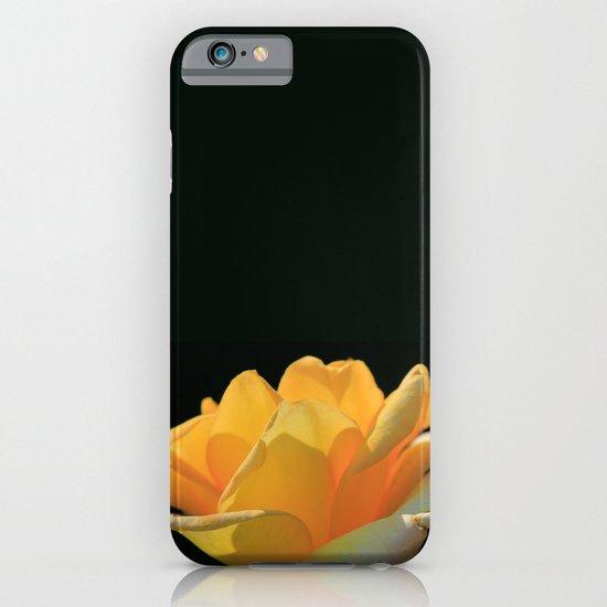 Yellow rose iPhone & iPod Case