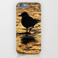 Beach Bird iPhone 6 Slim Case
