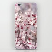 Icy Pink Blossoms - In Memory of Mackenzie iPhone & iPod Skin