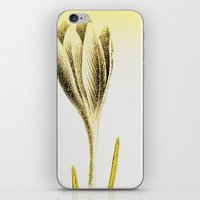 Cheerfulness iPhone & iPod Skin