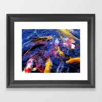 Koi Frenzy I Framed Art Print
