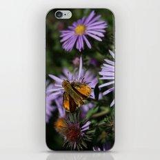 Prairie Life iPhone & iPod Skin