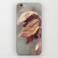 Flora No. 2 iPhone & iPod Skin