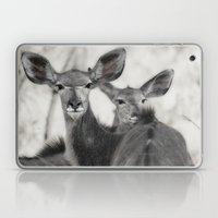 Kudu Laptop & iPad Skin