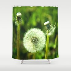 Blow me Shower Curtain