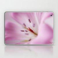 Pink Softness Laptop & iPad Skin