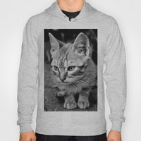 Kitty Cat Hoody