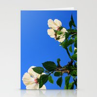 Summer Hibiscus Stationery Cards