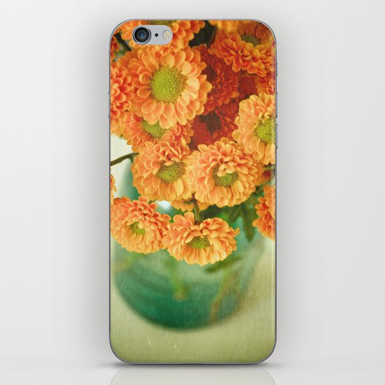 Autumn Day 28 iPhone & iPod Skin