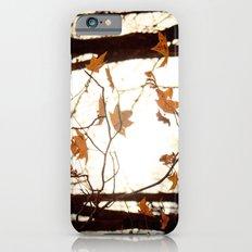 Sunlight Through the Branches iPhone 6 Slim Case