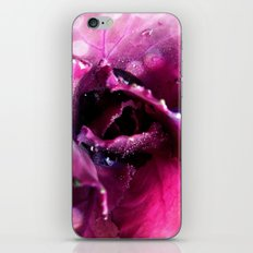 animal, vegetable, mineral iPhone & iPod Skin