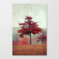 Rosso Canvas Print
