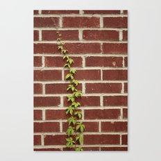 Nature and Man Canvas Print