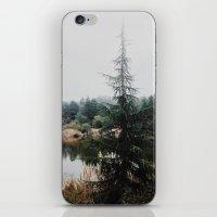 Franklin Canyon Reservoir, CA iPhone & iPod Skin