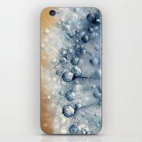Sea Blue Dandy iPhone & iPod Skin