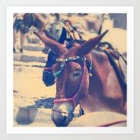 Santorini Donkey Art Print