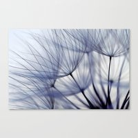 Canvas Print featuring Dandelion In Blue No.2 by Lawson Images