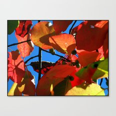 More Fall Leaves Canvas Print