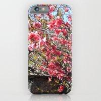 La Vie en Rose ! iPhone 6 Slim Case