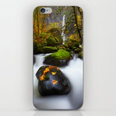 Elowah Falls Autumn iPhone & iPod Skin