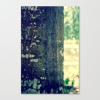 Canvas Print featuring TreeBark by Lindsey