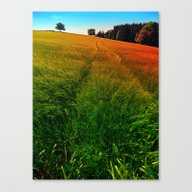 Waving Fields Of Spring Canvas Print
