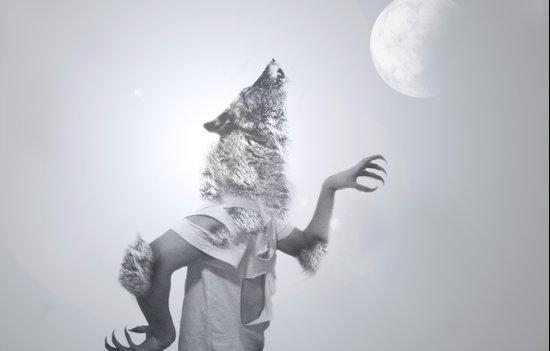 Fallenwolf Art Print