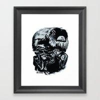 Old World Monkeys Framed Art Print