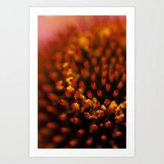 Red Petals with Pollen Art Print